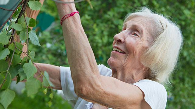 InteliCare empowering elderly Australians